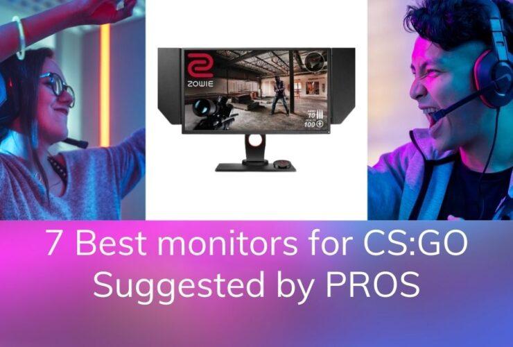 7 Best monitors for CS GO