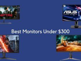 Best Monitors Under $300